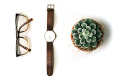 Glasses, watch and cactus